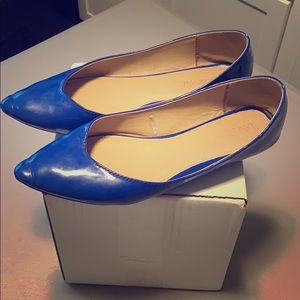 Lane Bryant Royal Blue pointe toe flats 🥿